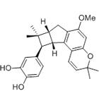 Artochamin J. Citotoxic properties