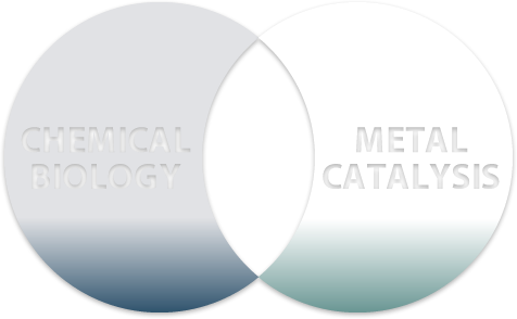 Chemical Biology Metal Catalysis