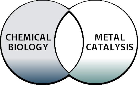 Chemical Biology Metal Catalysis