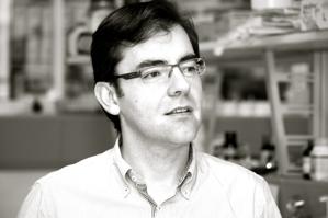 Fernando López García