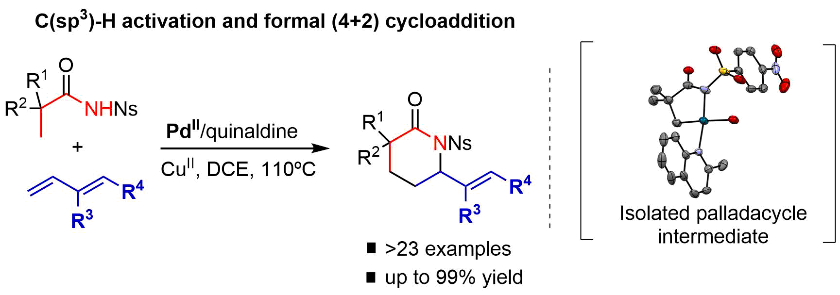Palladium-catalyzed formal (4+2) cycloaddition between alkyl amides and dienes initiated by the activation of C(sp3)−H bonds
